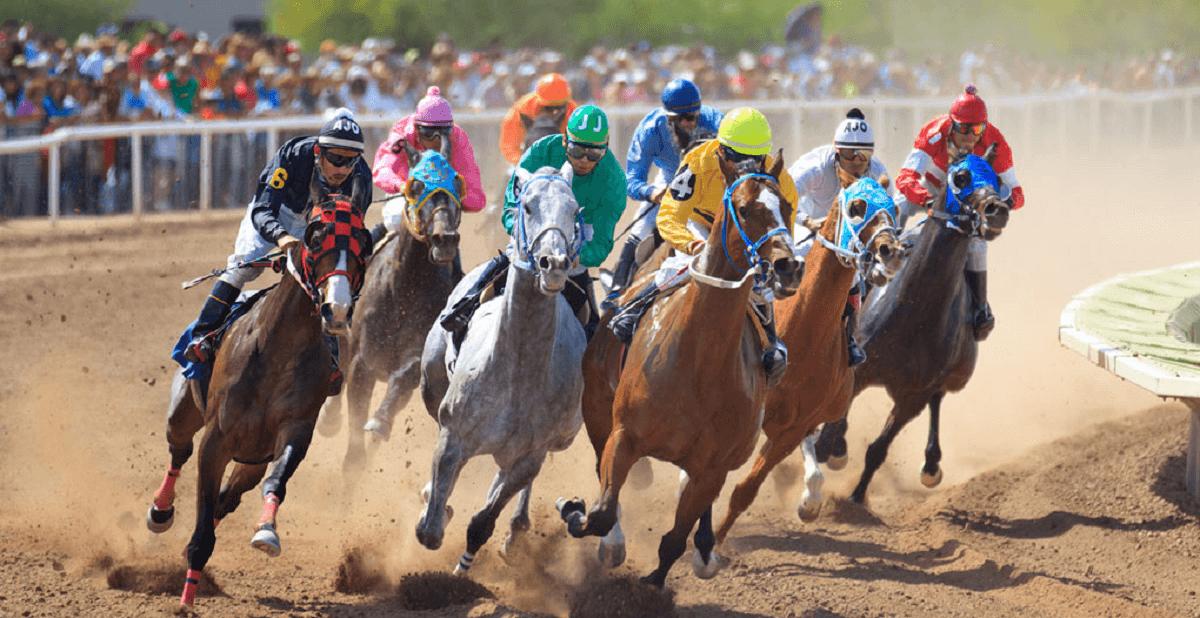 Arizona Horse Betting