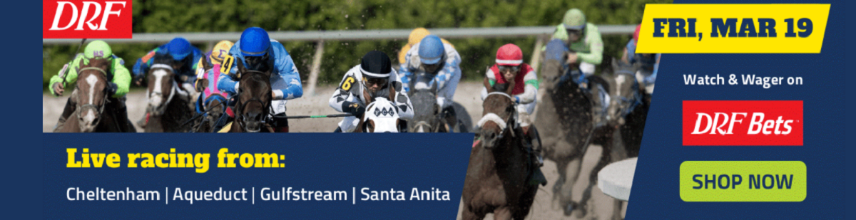 drf bets horse racing