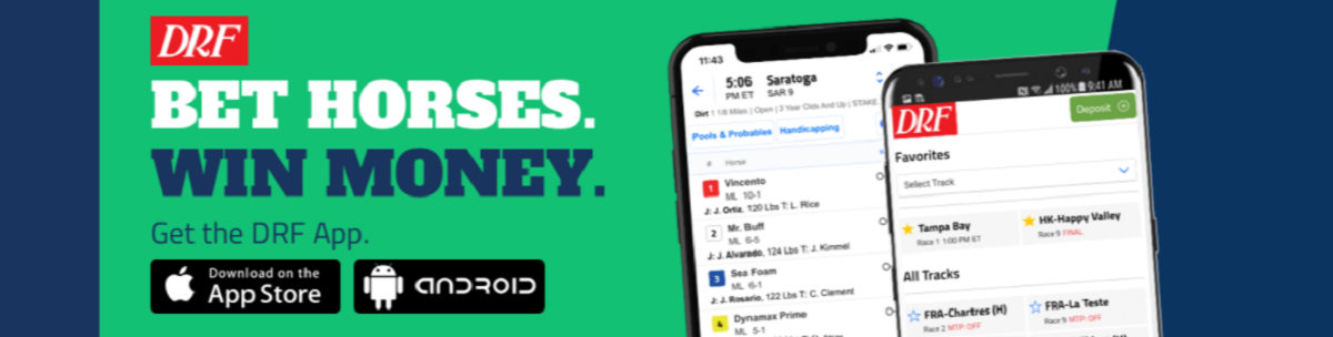 drf bets mobile